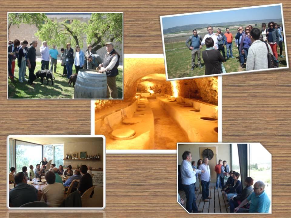 Bodega Ca Tino - Club de vinos Llíria